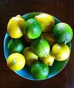 Tabletop Framed Prints - Tabletop Lemons and Limes Framed Print by Brooke Gamble