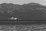 Mitch Shindelbower - Tahoe Queen Black and...