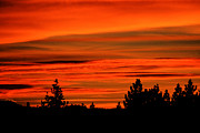 Beautiful Cities Photo Prints - Tahoe Sunset Print by Cheryl Young