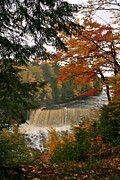 Teresa McGill - Tahquamenon Falls in the...