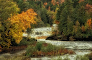 Autumn Photos Posters - Tahquamenon Falls Poster by Todd Bielby