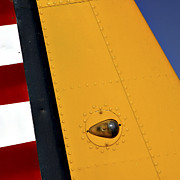 Blue Airplane Photos - Tail Detail of Vultee BT-13 Valiant by Carol Leigh