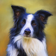Dog Art Prints Prints - Taj - Border Collie Portrait Print by Michelle Wrighton