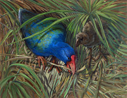 ACE Coinage painting by Michael Rothman - Takahe