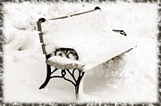 Park Scene Mixed Media Metal Prints - Take A Seat  And Chill Out - Park Bench - Winter - Snow Storm BW Metal Print by Andee Photography