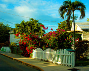 Bougainvilleas Prints - Take a stroll down on Elizabeth Street in Key West Florida Print by Susanne Van Hulst