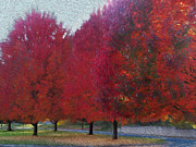 Red Leaf Digital Art - Take a Walk in My Park by Teri Schuster