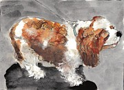 Dog Walking Prints - Take me for a walk Print by Cheryl Stevenson