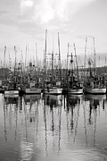 Boats In Harbor Posters - Take Me Out Tonight black and white Poster by Linda Paoluccio