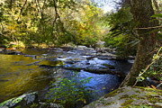Creeks Prints - Take me to the River Print by Debra and Dave Vanderlaan