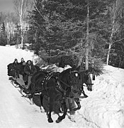 Winter Scenes Photos - Taking A Sleigh Ride In Canada by Underwood Archives