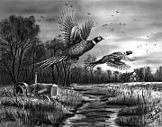 Old Farm Drawings - Taking Flight  by Peter Piatt