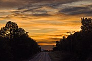 Country Dirt Roads Originals - Talimena Drive 10 by Ricardo Ruiz de Porras