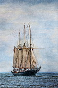 Wooden Ship Photo Posters - Tall Ship Denis Sullivan Poster by Dale Kincaid