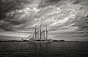 Tall Ship Prints - Tall Ship Mono Print by Charline Xia