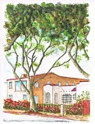 Tall Trees Paintings - Tall tree in West Hollywood - California by Carlos G Groppa