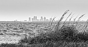 Tampa Skyline Photos - Tampa Across The Bay by Marvin Spates