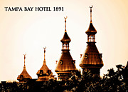 Tampa Bay Florida Framed Prints - Tampa Bay Hotel 1891 Framed Print by David Lee Thompson