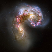 Hubble Photos - Tangled Galaxies by Adam Romanowicz