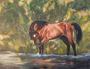 Salt River Wild Horses Paintings - Tango Territory  by Karen Kennedy Chatham
