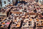 Fes Framed Prints - Tannery in Fes Framed Print by Sabino Parente