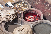 Patricia Hofmeester - Tannery in Fez with...