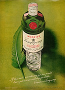 Seventies Posters - Tanqueray Gin Poster by Nomad Art And  Design