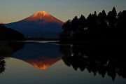 Volcano Photo Prints - Tanukiko Fuji Print by Aaron S Bedell