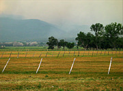 Taos Fields Print by Steven Ralser