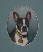 Boston Terrier Art Paintings - Tapped-out Louie by David Tabor