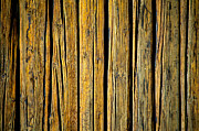 Hakon Soreide - Tar-Treated Wooden Wall