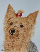 Yorkshire Terrier Watercolor Posters - Tara Poster by Megan Cohen