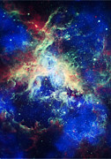 Tarantula Prints - Tarantula Nebula 4 Print by The  Vault - Jennifer Rondinelli Reilly