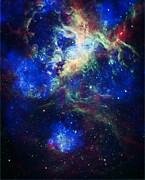 Constellations Posters - Tarantula Nebula 5 Poster by The  Vault - Jennifer Rondinelli Reilly