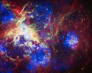Outer Space Photos - Tarantula Nebula 6  by The  Vault - Jennifer Rondinelli Reilly