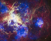 Heaven Photo Prints - Tarantula Nebula Print by Adam Romanowicz