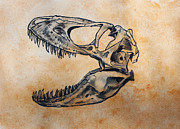 Fossil Originals - Tarbosaurus skull by Harm  Plat