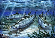 Fly Fishing Posters - Tarpon In Paradise - Sabalo Poster by Terry Fox