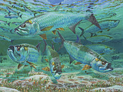 Tarpon Paintings - Tarpon rolling In0025 by Carey Chen