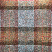 Red Robe Prints - Tartan wool Print by Tom Gowanlock