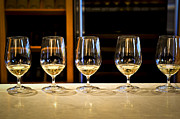 Stemware Photos - Tasting wine by Elena Elisseeva