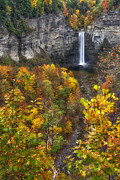 Mark Papke - Taughannock Fall 2