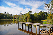 Clarendon County Prints - Taw Caw Park Print by Linda Brown