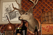 Cellar Posters - Taxidermy Deer In The Cellar Room At the Swiss Hotel Sonoma California 5D24450 Poster by Wingsdomain Art and Photography