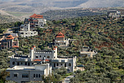 Olives Photo Posters - Taybeh New Houses Poster by Munir Alawi