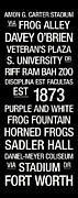 Frogs Art - TCU College Town Wall Art by Replay Photos