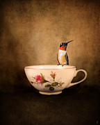 Tiny Bird Prints - Tea Time With a Hummingbird 2 Print by Jai Johnson