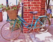 Plant Greeting Cards Prints - Teal Blue Vintage Bicycle Print by Donna Wilson