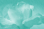 "\""textured Flower\\\"" Framed Prints - Teal Rose Framed Print by Camille Lopez"