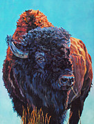Buffalo Paintings - Ted by Patricia A Griffin